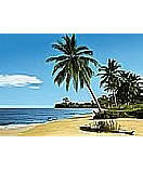 African Beach 4-074 Ocean wallpaper murals