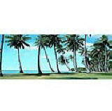 Palm View Panoramic tropical wall mural