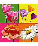 Fun Flowers 259-72061 wall murals
