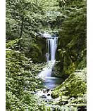 Waterfall In Spring 364 discount wall murals