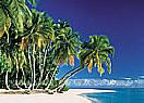 Tropical Beach 3905 Large Wall murals