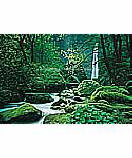 Ellowa Falls, Oregon discount Waterfall Wall Murals