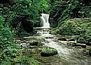 Waterfall, Black Forest  Large Wall murals