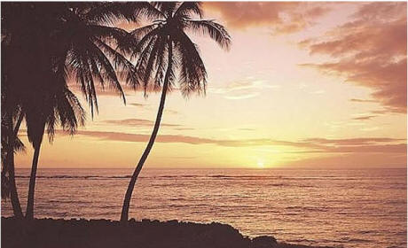 Hawaiian Sunset Wall Mural C381