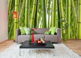 Bamboo wall mural c866 by environmental graphics for Environmental graphics giant world map wall mural
