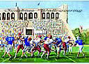 Football Stadium york wallpaper wall mural