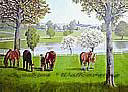 Lexington Horse Farm york wallpaper wall mural