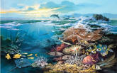 Oceanic Wonder Wall Mural PR1838