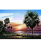 Palmetto Sunrise sunset  wall murals