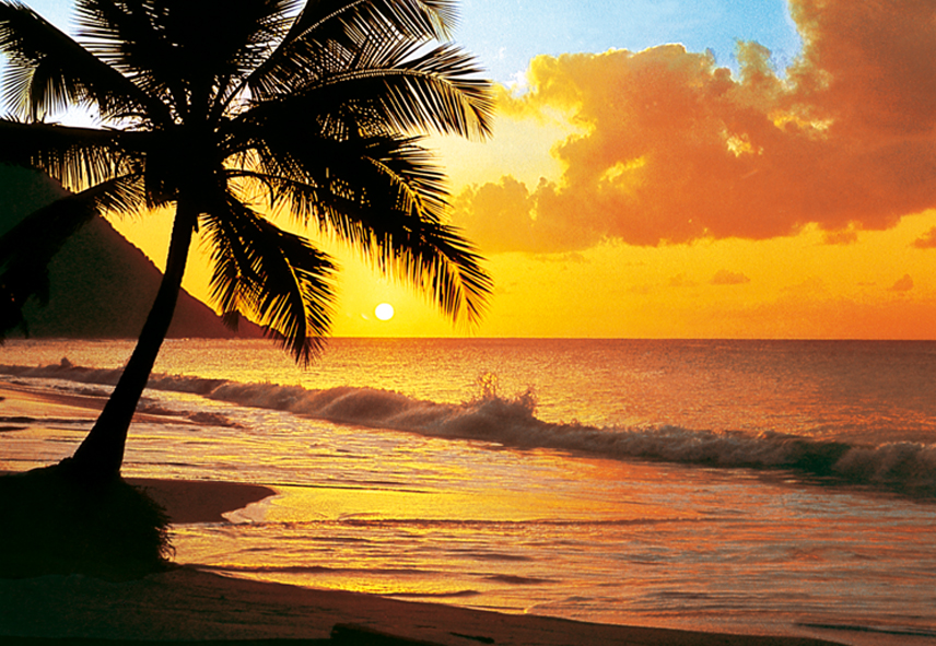 Pacific Sunset 218 Wall Mural