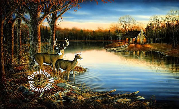 Ra0169m Deer Tranquil Evening Wall Mural By York