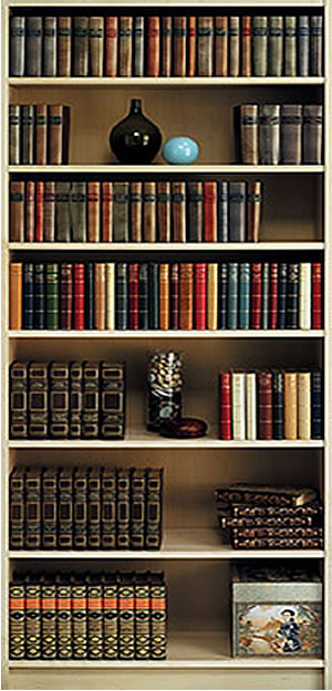 Bookshelf wall mural for Bookshelf mural wallpaper
