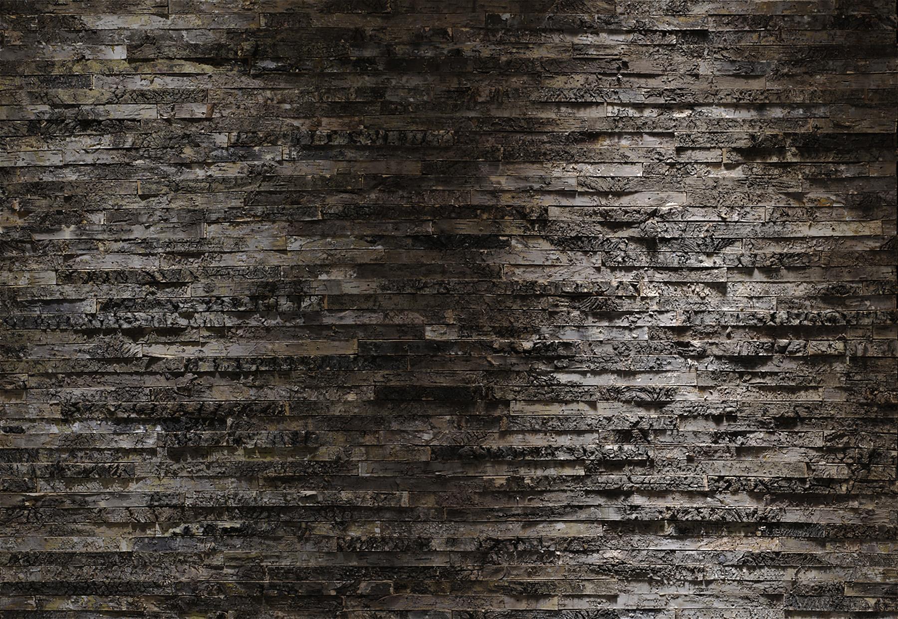Birkenrinde Wall Mural 8 700 By Komar
