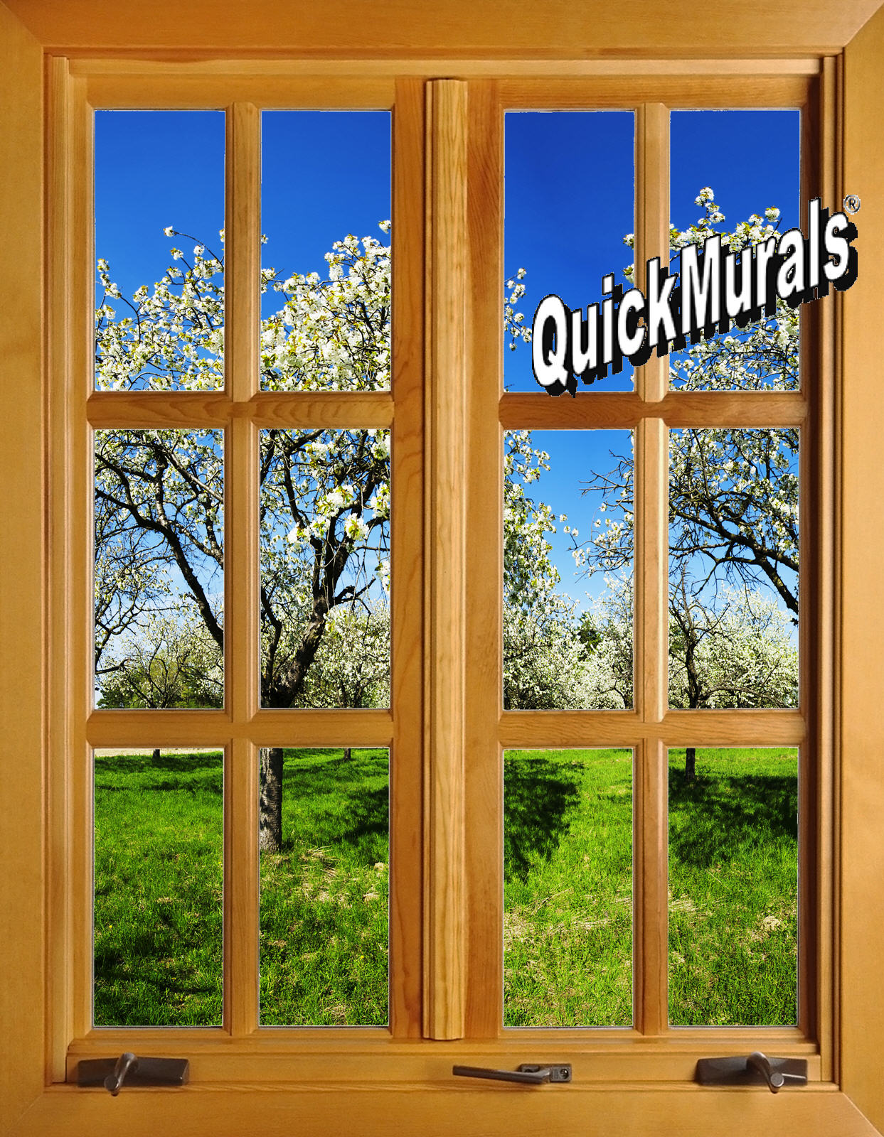 Apple Blossom Window 2 Peel Stick Wall Mural