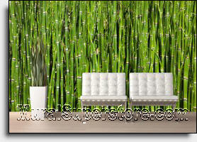 Deep Green Bamboo Shafts Form This Zen Inspired Wall Mural. This Photorealistic  Wall Mural Is The Perfect Backdrop For Meditation. Part 76