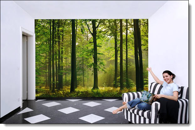 Autumn Forest Wall Mural 216