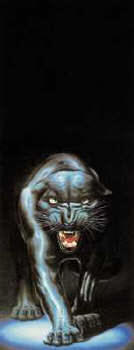 Black panther wall mural 5085 for Black panther mural