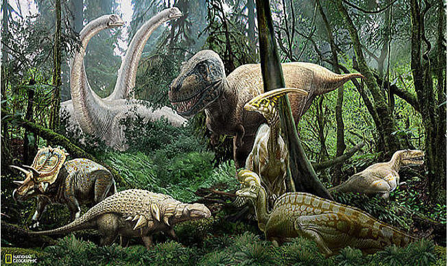 national geographic dinosaur mural ng94615 national geographic galaxy wall mural jet com