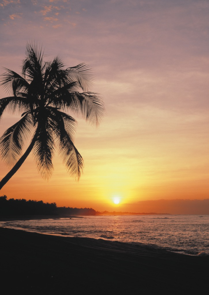 Tropical sunset wall mural pr1028 for Beach sunset wall mural