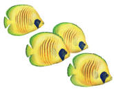Walls of the Wild Peel & Stick Appliqué Butterfly Fish L