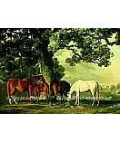 Green Pastures discount wall murals