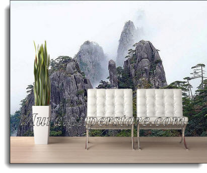 Foggy Mountain Wall Mural DS8007