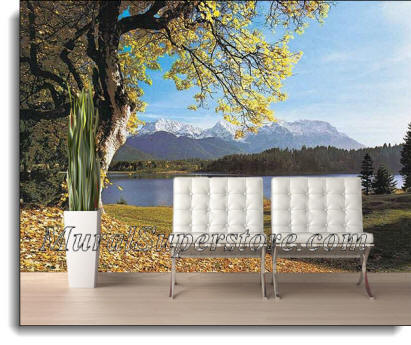 Herzergstand Germany Wall Mural DS8024