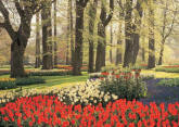 Floral Tulips and Trees DS8082 Wall Mural