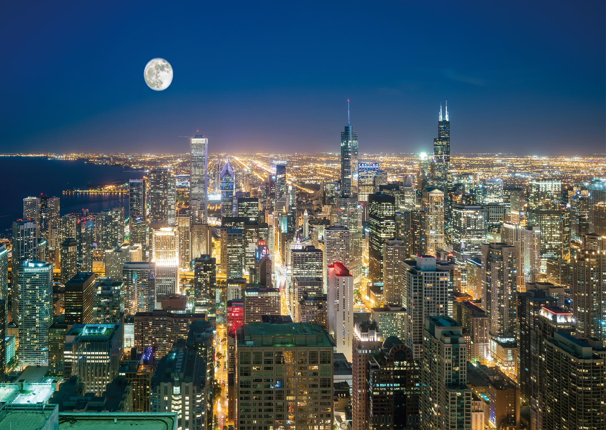 Chicago Skyline Wall Mural