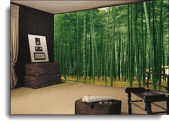 Bamboo Plantation Japan Wall Mural