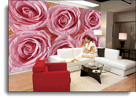Pink Lady Wall Mural 8138