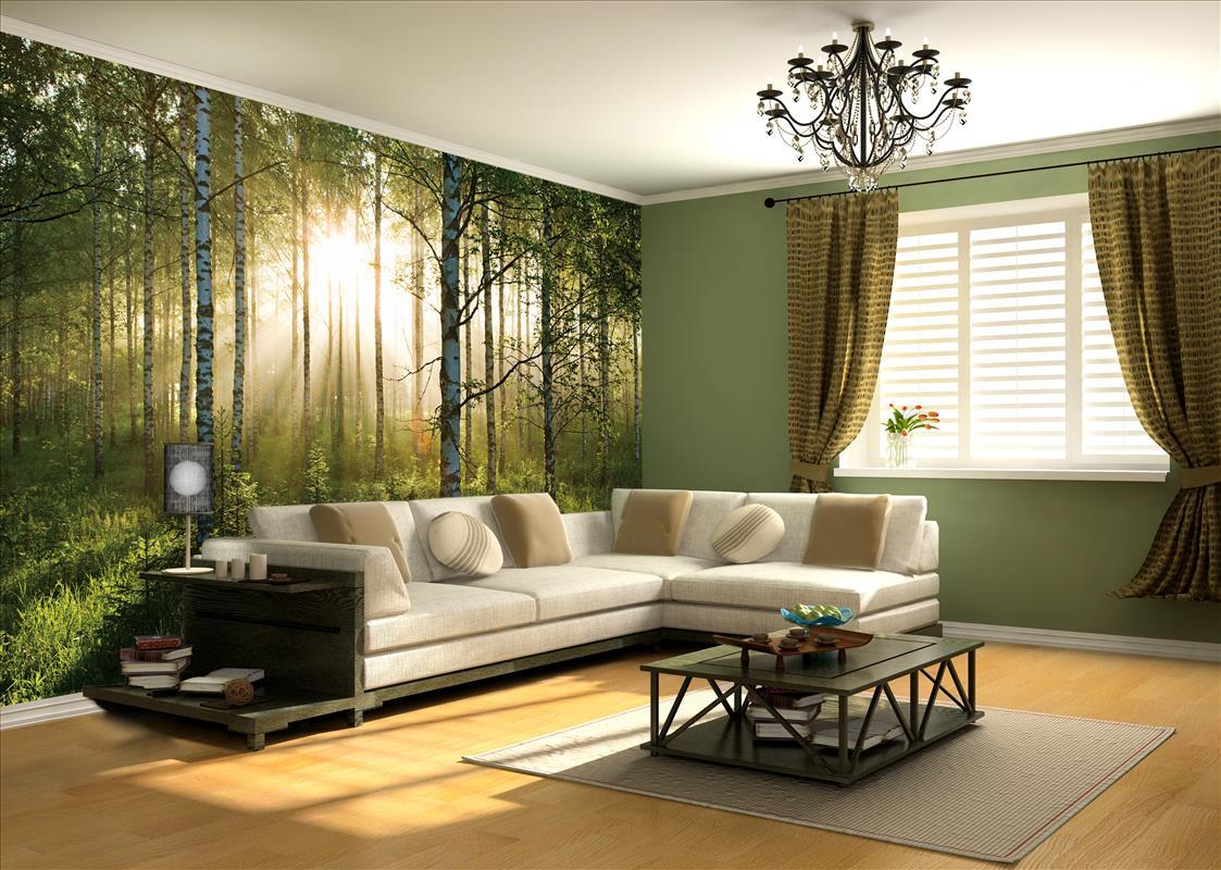Sunlight Forest Wall Mural