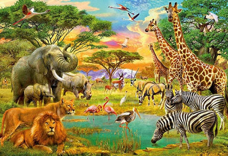 On Safari Wall Mural DM154 by Ideal Decor
