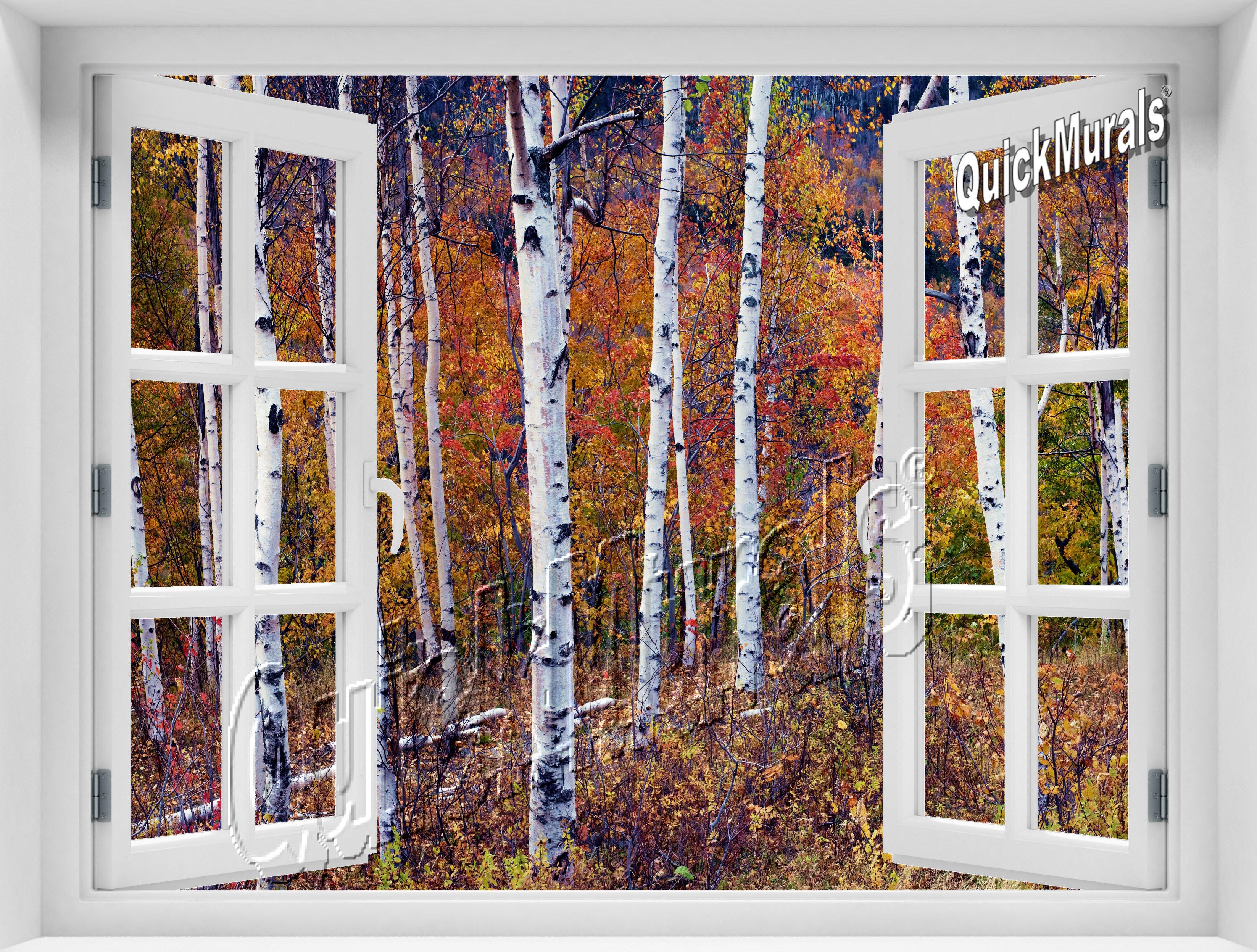 Birch Forest Window