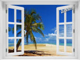 African Beach Window