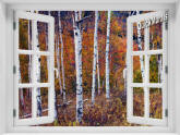 Birch Forest Window