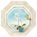 Orchid Window RV2670M wallpaper wall mural