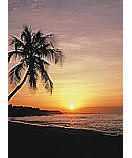 Tropical Sunset Ocean wallpaper murals